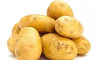 马铃薯(土豆)最早在哪里被发现?马铃薯(土豆)是怎样流传到世界的?马铃薯(土豆)的历史