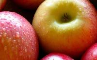 世界上第一个苹果什么时候出现的?世界上第一个苹果在哪出现的?是在中国出现的吗?人类什么时候开始吃苹果的?