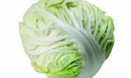 世界上第一颗卷心菜(包菜)什么时候出现的,在哪出现的?卷心菜(包菜)的起源